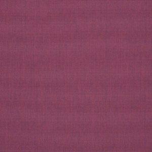 CANVAS IRIS 57002-0000