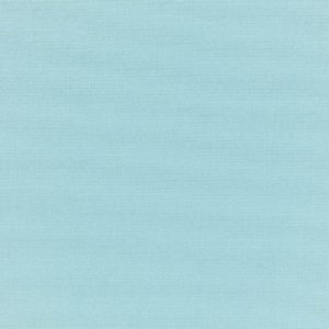 CANVAS MINERAL BLUE 5420-0000