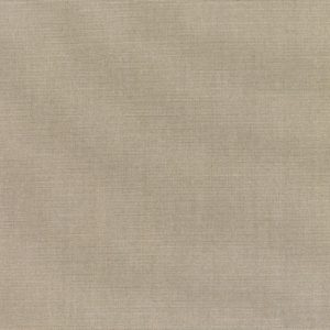 CANVAS TAUPE 5461-0000
