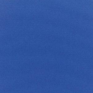 CANVAS TRUE BLUE 5499-0000